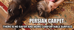 Perisan carpet safe and comfortable