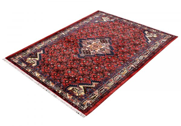 Persian Hamadan rug for sale - Hoseinabad DR349