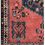 Rusty Red Small Afshar Persian Rug for sale DR4211-5179