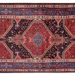 Tuyserkan Persian Rug, Tribal Rug DR327 5610