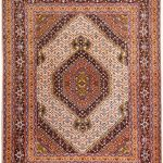Cream Rug, 40 years old Ardabil Rug DR 491-7276
